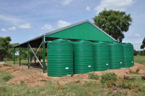 Rainwater Harvesting Project